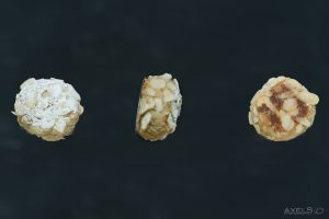 mandelbällchen - Mandorlini -
