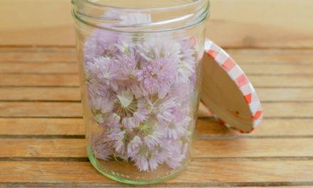 Schnittlauchblüten – Essig