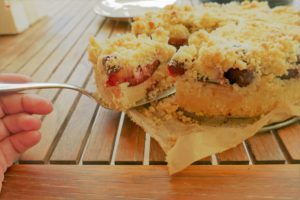 Dinkelstreuselkuchen ohne Hefe
